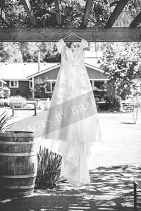 yelm_wedding_photographer_Jurpik_001_DS8_8627