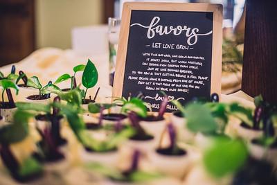 Chris & Allison's Wedding Reception-4