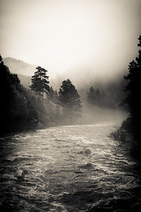 Poudre River in the fog