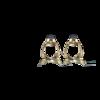 T110MG_1_pair