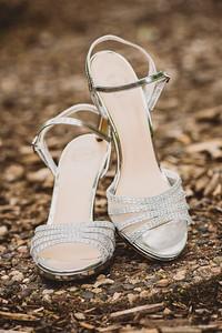 Dallas & Courtney's Wedding-0006