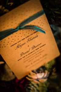 Dan & Alyssa's Wedding-0011