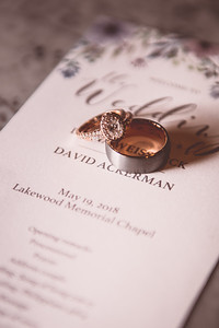 Dave & Diana's Wedding-0006