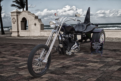 Dave Heeter's 67 HD Sportster Trike