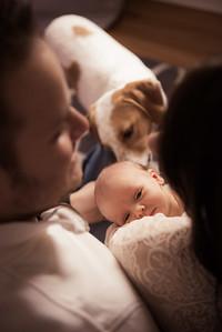 David & Suzie's Newborn Photos-0006