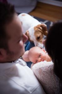 David & Suzie's Newborn Photos-0005