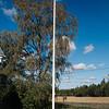 Dokumentaarinen hääkuvaus Turku Lammin talo-9