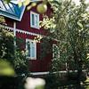 Dokumentaarinen hääkuvaus Turku Lammin talo-7