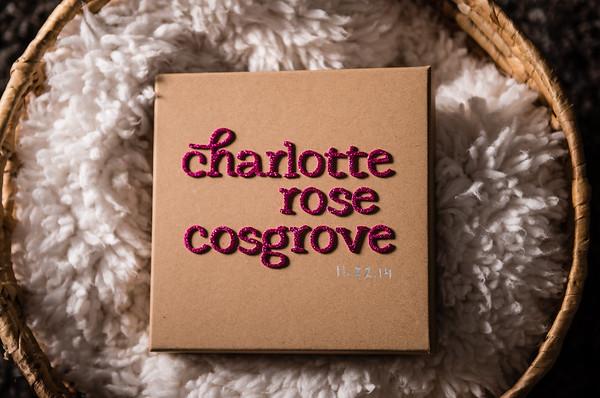 Cosgrove Family-0002