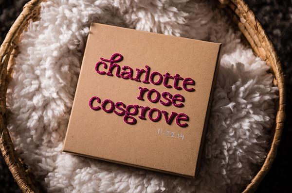 Cosgrove Family-0003