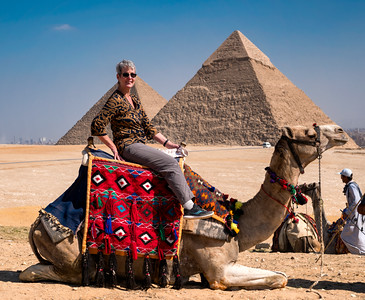 The Great Egyptian Camel Rider