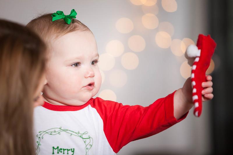 Eleanor's 1st Birthday & Holiday Mini Photo Session, Champion Trace, Nicholasville, KY 12.7.14.