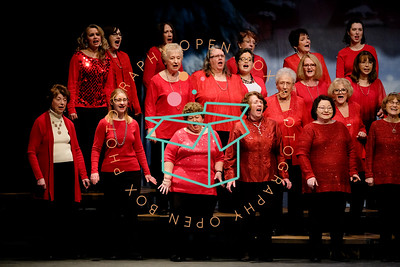 Seaway Chorale and Orchestra Reel Christmas December 2018-27