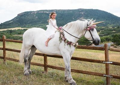 Ashlynn Unicorn-1-4