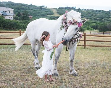 Ashlynn Unicorn-1-9