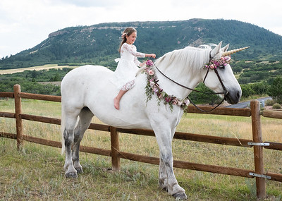 Ashlynn Unicorn-1-5