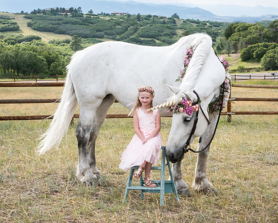 Ellie Unicorn-1-5
