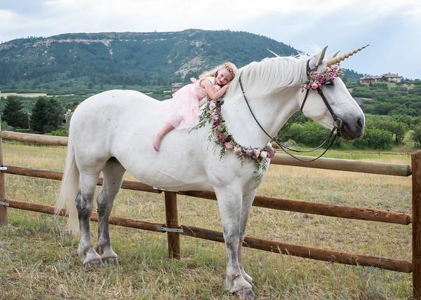 Ellie Unicorn-1-12