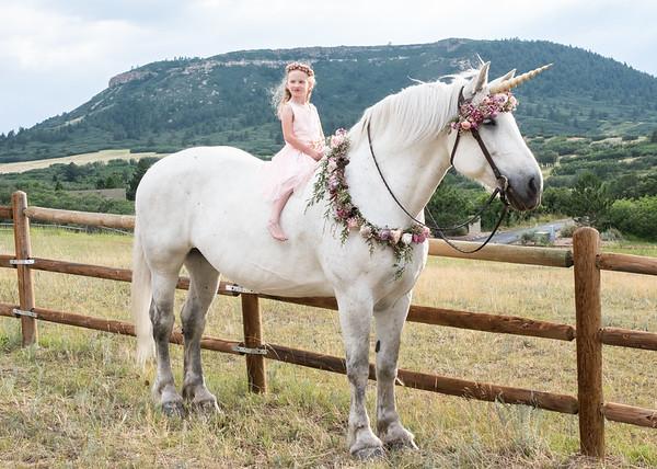 Ellie Unicorn-1-13