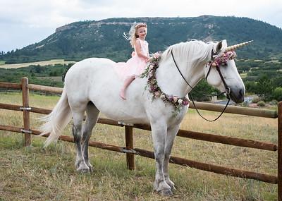 Ellie Unicorn-1-10