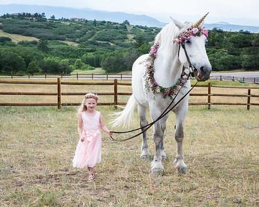 Ellie Unicorn-1-4