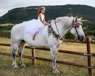 Unicorn-1-14
