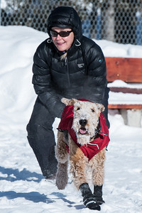 115-LakeLouise-2018 030 feb misc+puppy-0867