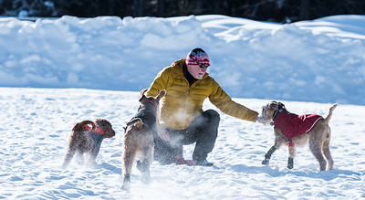 113-LakeLouise-2018 030 feb misc+puppy-0851