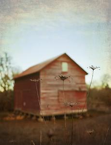Finley Barn