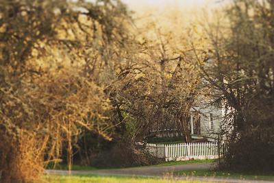 Finley House