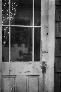 the door_1