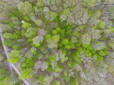Friendship Cabin Aerial Mapping