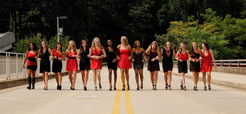 2013-2014 UGA Dance Team