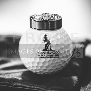 yelm_wedding_photographer_canterwood_golf_0005_D75_6395-2
