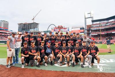Tigers Baseball at Busch Stadium June 2019