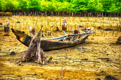 Tsunami Surviver, Erratta, Andaman