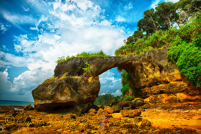 Natural bridge eroded from rock - Neil Island, Andaman Nicobar Islands