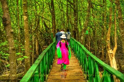 Into Wilderness - Baratang, Andaman
