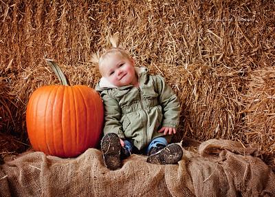 JS Clark Pumpkin Patch 2016