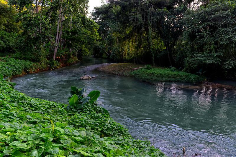 Martha Brae river, Trelawny, Jamaica