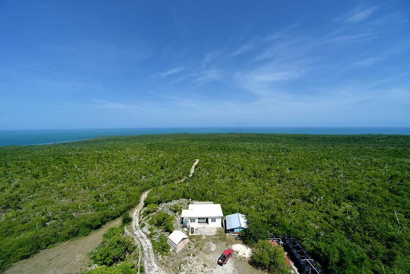 Portland Ridge, Portland Ridge Protected Area, Jamaica, by Ted Lee Eubanks.