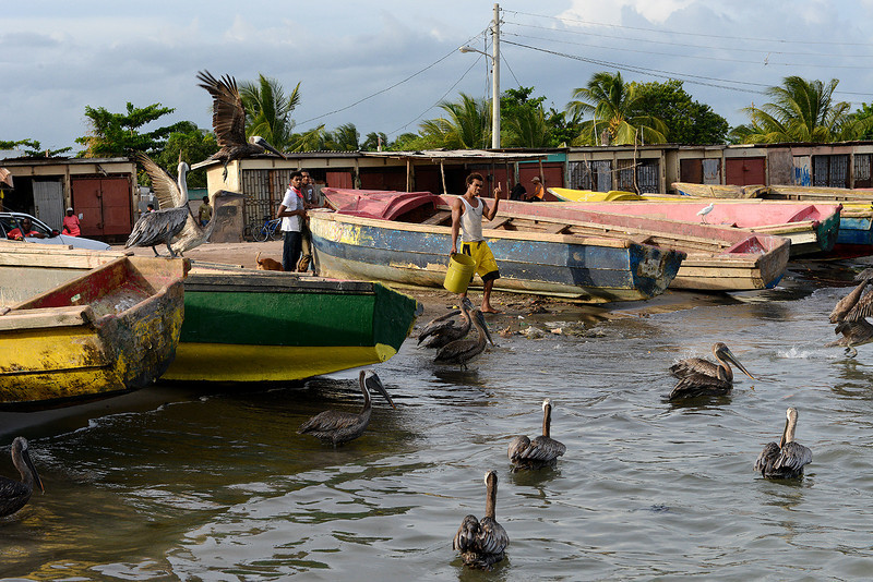 Old Harbour Bay fishing village, Portland Bight Protected Area, Jamaica, by Ted Lee Eubanks.
