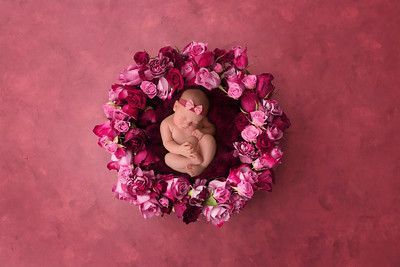 Jenna's Newborn Shoot