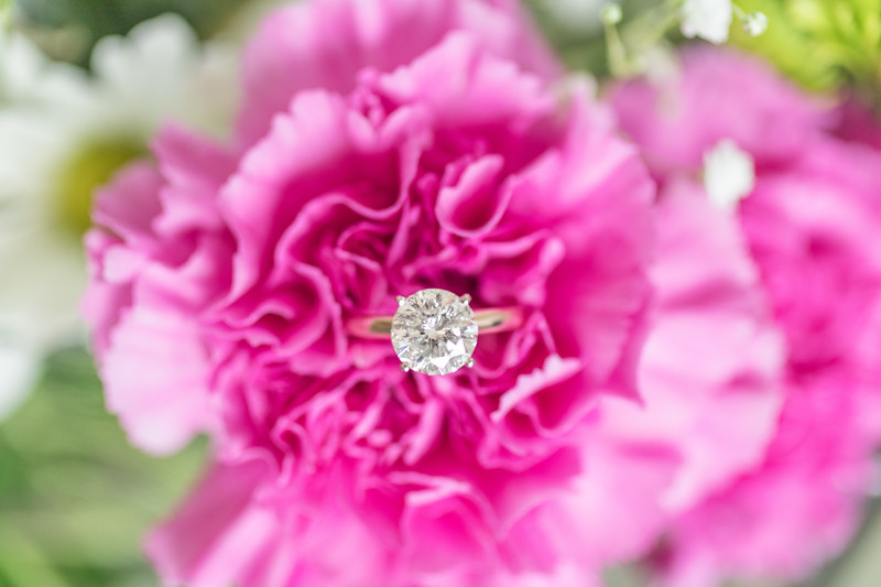Jessi & Trevor | Engagement Photography