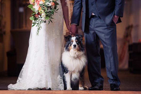 Jim & Julia's Wedding-0018