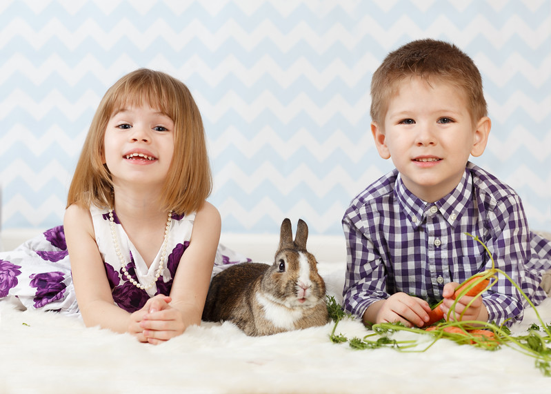 Spring photos with the bunnies.