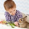 Spring photos with the bunnies.