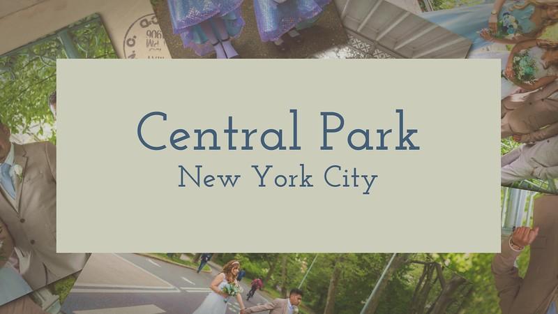 Julio__Flor_Maria_-_Central_Park_Wedding_1080p