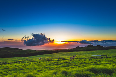 Kahua Ranch Sunset 1