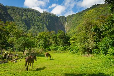 Hiʻilawe Falls 3